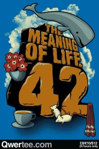 The Meaning of Life at qwertee.com